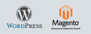 Wordpress / Magento services