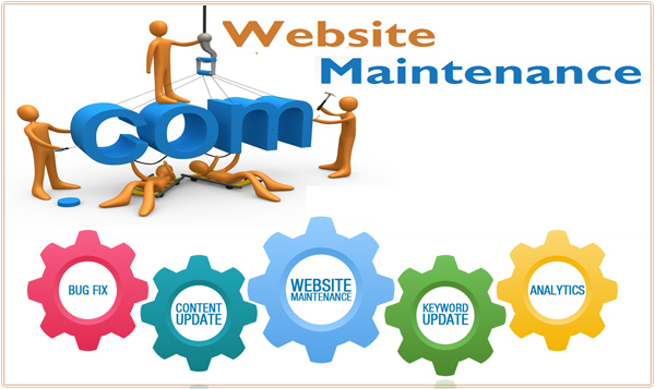 Provide website maintence services